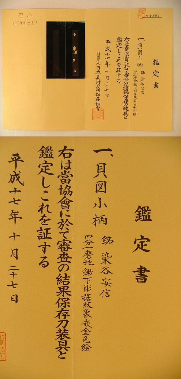 貝図小柄 染谷安信 Picture of Certificate