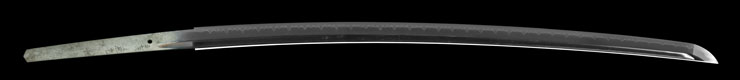 katana [kanemoto 27 generations](kaneko tatsuichirou) Picture of blade
