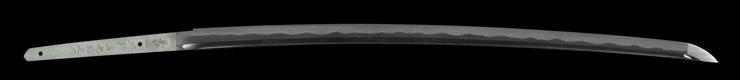 katana [buzen_ju kouno sadamitsu kunimitsu saku HEISEI 19] Picture of blade