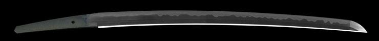 wakizashi [hizen no kuni_ju omi daijo fujiwara tadahiro] (sintou joujou-saku) (wazamono) Picture of blade