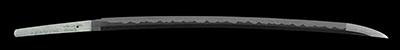 katana [higo_koku yatsushiro_ju akamatsu tarou  kanehiro saku utsusu kiyomaro use homemade iron HEISEI 31] (shinsakutou new sword)thumb