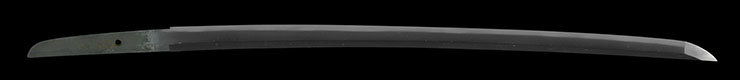 wakizashi [hankei] (sintou saijou-saku) Picture of blade