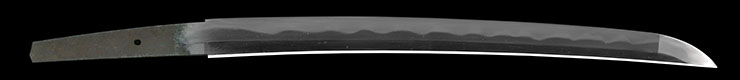 wakizashi Mumei No signature [tegarayama masashige] (toran_ba) (sinsintou joujou-saku) Picture of blade