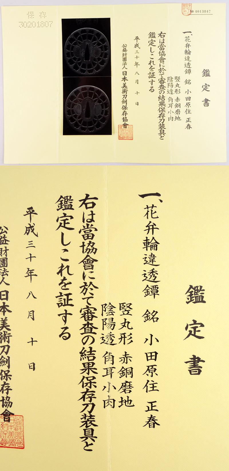 花弁輪違透鍔 小田原住 正春 Picture of Certificate