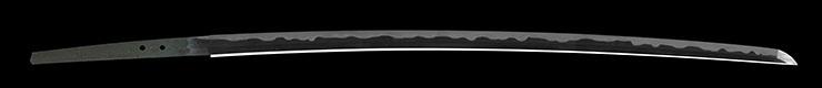 katana [echigo_no_kami kanesada] (2 generation) (sakakura gonnoshin terukane) (toran_ba) (sintou joujou-saku) (oh wazamono) Picture of blade