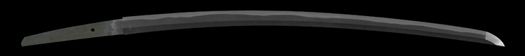 katana [awataguchi omi_no_kami tadatsuna GENROKU 17] (ikkanshi tadatsuna) (sintou saijou-saku)(wazamono) Picture of blade